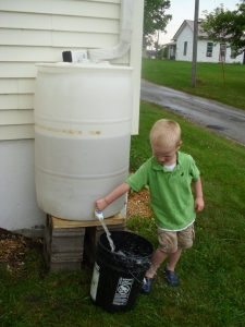 Our new rain barrel! One rain and 35 gallons! G is a master plant-waterer